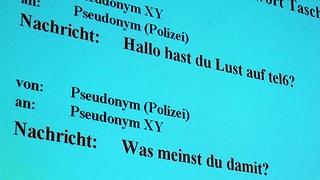 Luzerner Polizei darf in Zukunft verdeckt ermitteln