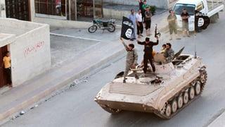 Bundesrat will Dschihad-Reisende nicht zurückholen