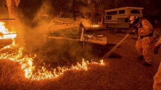 Notstand in Kalifornien wegen Buschbränden