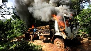 Ka'apor-Krieger lehren brasilianische Holz-Mafia das Fürchten