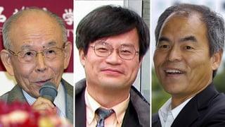 Drei Japaner werden mit dem Physiknobelpreis geehrt