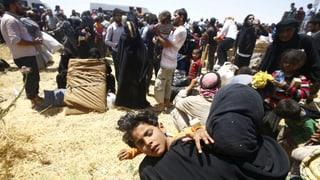 Erste Kontingentsflüchtlinge aus Syrien kommen im Sommer