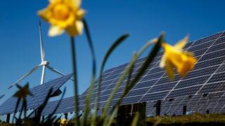 Jetzt kommt der günstige Solarstrom