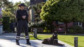 Aargauer Gemeinden engagieren private Sicherheitsdienste