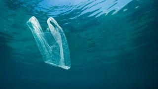 «Die Fischer dachten: Was sie ins Meer werfen, ist weg»