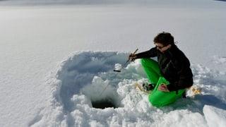 Eisfischen: Pilotprojekt auf dem Silsersee