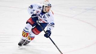 Suter zurück nach Zürich, Fora und Rathgeb in die AHL
