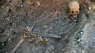 Gebeine von König Richard III. identifiziert