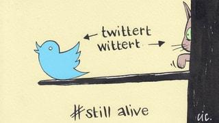 Apropos Twitter: Das sind die ersten Tweets unserer Moderatoren.