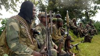 Kongos Armee besiegt M23-Rebellen