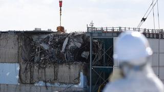 Atomausstieg: Ja, nein, vielleicht?