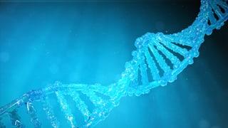 Therapie bereits vor der Geburt (Artikel enthält Video)