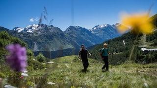 Hitzesommer bringt der Ostschweiz noch keine Rekorde
