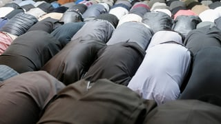 Radikale Imame in der Schweiz- Muslimische Gemeinde will handeln