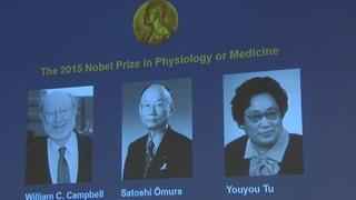 Medizin-Nobelpreis für Parasiten- und Malaria-Forscher