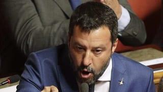 Franada per Salvini