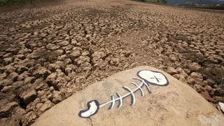 Wetterextreme nehmen wegen Klimawandel zu