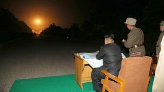 Kim Jong Un – per Dekret zum «alleinigen» Führer