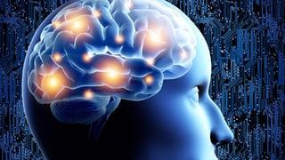 Störungen im Gehirn – Faszinierend und verstörend