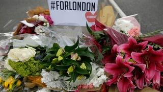 Wer steckt hinter dem jüngsten Anschlag in London? Für die Polizeichefin der Hauptstadt sind auch die Drahtzieher in Grossbritannien zu suchen.