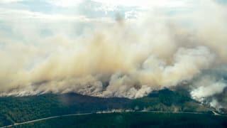 Incendis da guaud en Svezia furieschan