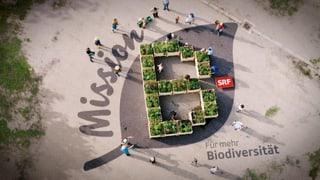 Biodiversität im Programm von SRF