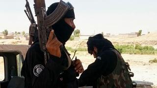 «Luftschläge allein werden die IS-Kämpfer nicht aufhalten»