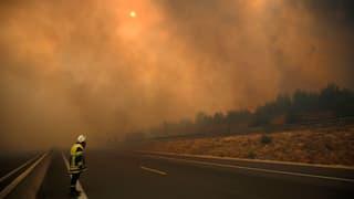 Kampf gegen die Flammen in Südfrankreich und auf Madeira