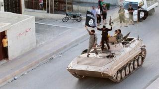 IS und Al Kaida: Wenn aus Zwergen Riesen werden