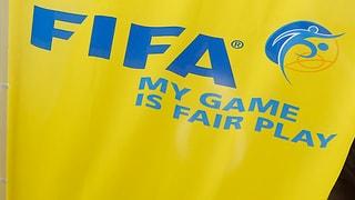 Staat soll Fifa kontrollieren