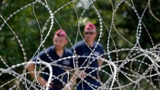 Ungarischer Grenzzaun wird von Häftlingen gebaut