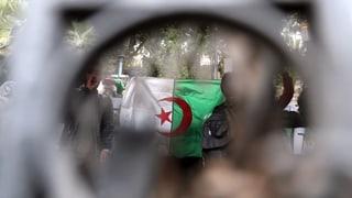 Nur der Verfassungsrat kann Bouteflika stoppen