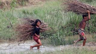 Wer sind eigentlich die Rohingya?