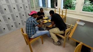 «Asylbewerber haben ein wirtschaftliches Potenzial»