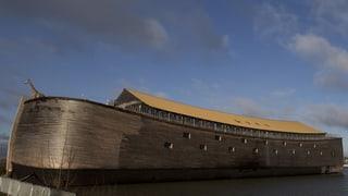 Hol-Land unter: Niederländer baut Arche Noah in Originalgrösse