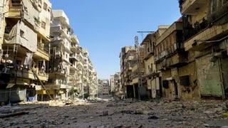 «Der Westen hat in Syrien zu früh auf das falsche Pferd gesetzt»