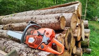 Es gibt nicht mehr Geld für den Aargauer Wald