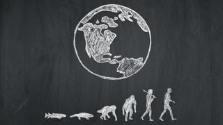 Hunderttausende Jahre hat sich der Mensch entwickelt. Heute ist er das Produkt seines Könnens – mit gröberen Mängeln.