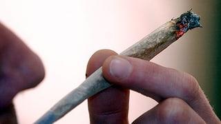 Basler Cannabis-Projekt vor ungewisser Zukunft