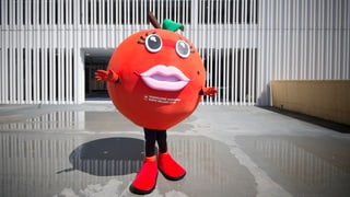 Expo Mailand: Schweiz appelliert mit Apfelringli ans Gewissen