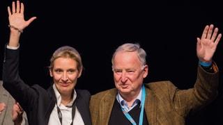 Doppelspitze soll AfD in den Bundestag bringen