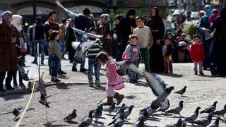 Fragile Waffenruhe in Syrien: Zwischenfälle gemeldet