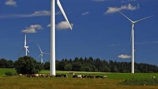 Windturbinen verschandelten Landschaften, so Buwal-Ex-Direktor Philippe Roch. Aufgeben kommt für ihn nicht in Frage.