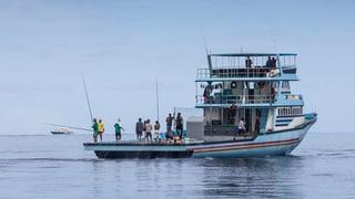Fischherkunft wird besser deklariert