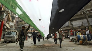 Syrien: Übergangsregierung für «befreite Zonen»