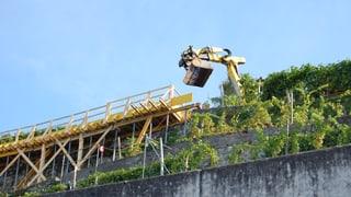Neue Trockenmauer bringt mehr Ökologie in den Oberhofner Rebberg
