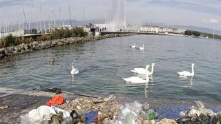 Der Genfersee ist voller Plastik