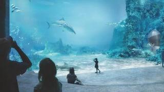 Ozeanium spaltet Basler Genossen