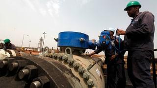 NGOs fordern verbindliche Regeln für Rohstoffhändler
