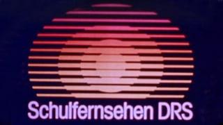 Video «Signet des Schulfernsehens aus den 1980er-Jahren» abspielen